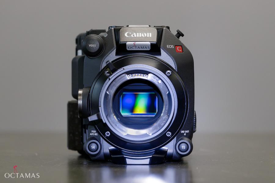 CANON EOS C500 Mark II Camera OCTAMAS Rental